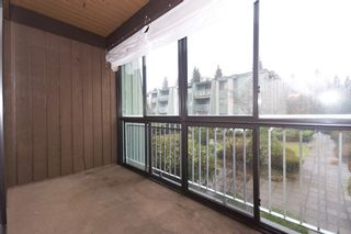 Photo 5: 206 9202 Horne Street in Lougheed Estates: Home for sale : MLS®# V802193
