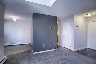 Photo 4: 11 711 3 Avenue SW in Calgary: Downtown Commercial Core Apartment for sale : MLS®# A1125980