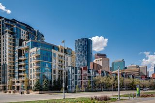 Photo 34: 359 333 Riverfront Avenue SE in Calgary: Downtown East Village Apartment for sale : MLS®# A1124855