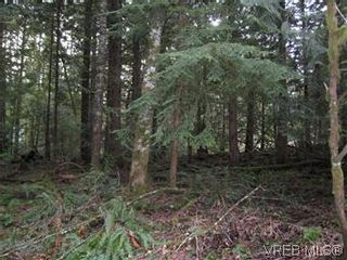 Photo 4: Lot 4 Stevenson Rd in SHAWNIGAN LAKE: ML Shawnigan Land for sale (Malahat & Area)  : MLS®# 566583