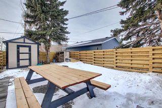 Photo 37: 1614 Saskatchewan Street: Crossfield Detached for sale : MLS®# A1061183