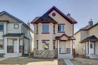 Main Photo: 25 Saddlefield Crescent NE in Calgary: Saddle Ridge Detached for sale : MLS®# A1094573