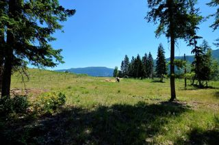 Photo 7: 455 Albers Road, in Lumby: Agriculture for sale : MLS®# 10235228