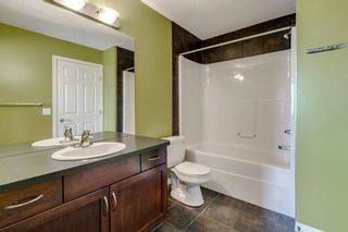 Photo 33: 1571 COPPERFIELD Boulevard SE in Calgary: Copperfield Detached for sale : MLS®# A1107569