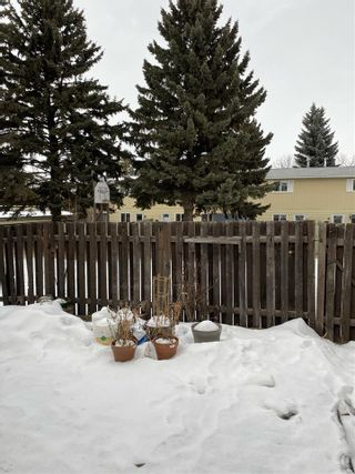 Photo 29: 28 RIDGEWOOD Terrace: St. Albert Townhouse for sale : MLS®# E4225750