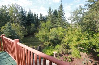 Photo 17: 56318 RGE RD 230: Rural Sturgeon County House for sale : MLS®# E4260922