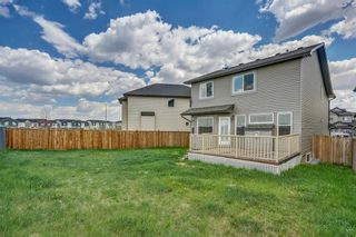 Photo 33: 51 Skyview Springs Cove NE in Calgary: Skyview Ranch Detached for sale : MLS®# C4186074