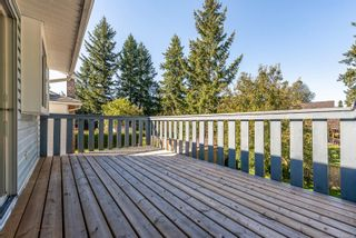 Photo 21: 420 S McPhedran Rd in : CR Campbell River Central House for sale (Campbell River)  : MLS®# 855063