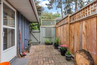 """Photo 27: 37 900 W 17TH Street in North Vancouver: Mosquito Creek Townhouse for sale in """"Foxwood Hills"""" : MLS®# R2503930"""