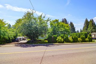 Photo 6: 12390 216 Street in Maple Ridge: West Central House for sale : MLS®# R2592300