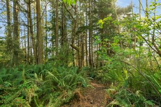 Photo 1: 2550 Seaside Dr in : Sk French Beach Land for sale (Sooke)  : MLS®# 873874