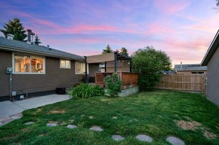 Photo 32: 6703 24 Avenue NE in Calgary: Pineridge Detached for sale : MLS®# A1124437