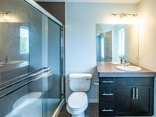 Photo 16: 13 Chapalina Lane SE in Calgary: Chaparral Row/Townhouse for sale : MLS®# A1143721