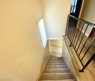 Photo 14: 5317 48 Avenue: Wetaskiwin House for sale : MLS®# E4233150