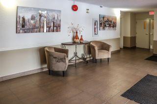 Photo 30: 301 17151 94A Avenue in Edmonton: Zone 20 Condo for sale : MLS®# E4232679