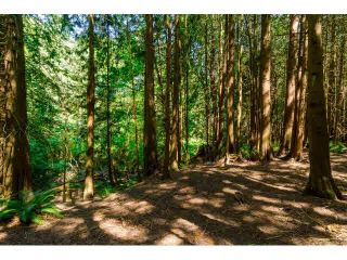"""Photo 5: 14567 64TH Avenue in Surrey: East Newton House for sale in """"SULLIVAN HEIGHTS"""" : MLS®# F1446471"""