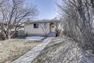 Main Photo: 126 Dovercliffe Way SE in Calgary: Dover Detached for sale : MLS®# A1082276