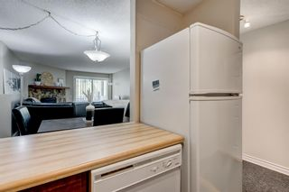 Photo 7: 2135 70 Glamis Drive SW in Calgary: Glamorgan Apartment for sale : MLS®# A1118872