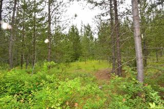 Photo 32: DL 1335A 37 Highway: Kitwanga Land for sale (Smithers And Area (Zone 54))  : MLS®# R2471833