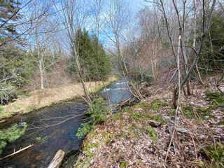Photo 7: Sherbrooke Road in Greenvale: 108-Rural Pictou County Vacant Land for sale (Northern Region)  : MLS®# 202111683