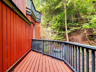 Photo 28: 4616 Cliffwood Pl in : SE Broadmead House for sale (Saanich East)  : MLS®# 875533