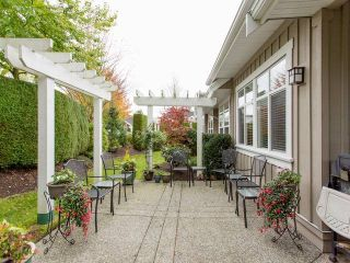 Photo 16: # 25 18088 8TH AV in Surrey: Hazelmere Condo for sale (South Surrey White Rock)  : MLS®# F1425814
