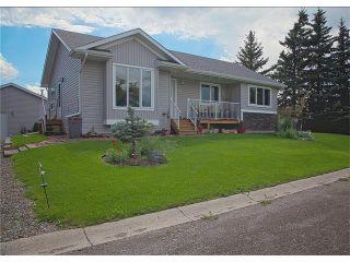 Photo 50: 111 2 Avenue NE: Black Diamond House for sale : MLS®# C4076521