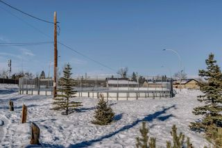 Photo 50: 2446 28 Avenue SW in Calgary: Richmond Detached for sale : MLS®# A1070835