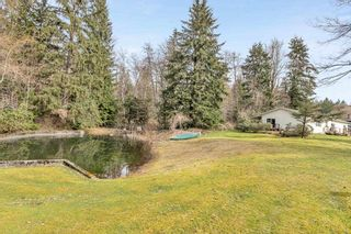 """Photo 10: 12954 MILL Street in Maple Ridge: Silver Valley House for sale in """"SILVER VALLEY/FERN CRESCENT"""" : MLS®# R2553509"""