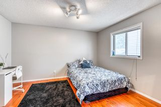 Photo 19: 686 Coventry Drive NE in Calgary: Coventry Hills Detached for sale : MLS®# A1116963