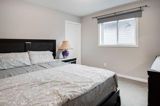 Photo 18: 249 Skyview Shores Manor NE in Calgary: Skyview Ranch Detached for sale : MLS®# A1040770