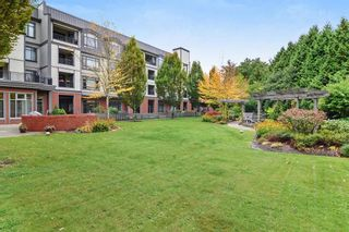 """Photo 19: 211 8880 202 Street in Langley: Walnut Grove Condo for sale in """"The Residence"""" : MLS®# R2444282"""