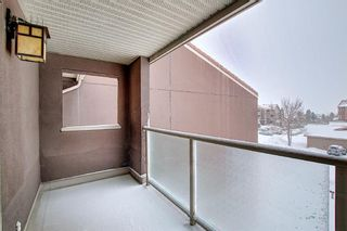 Photo 16: 2031 Edenwold Heights NW in Calgary: Edgemont Apartment for sale : MLS®# A1066741