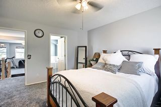 Photo 22: 287 Chaparral Drive SE in Calgary: Chaparral Detached for sale : MLS®# A1120784