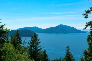 Main Photo: 450 MOUNTAIN Drive: Lions Bay House for sale (West Vancouver)  : MLS®# R2586968