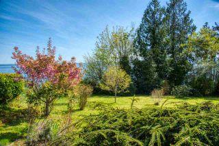 Photo 15: 2471 LOWER Road: Roberts Creek House for sale (Sunshine Coast)  : MLS®# R2366048