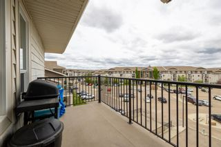Photo 24: 2408 7343 SOUTH TERWILLEGAR Drive in Edmonton: Zone 14 Condo for sale : MLS®# E4247451