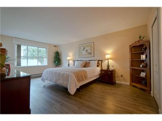 """Photo 10: 203 15439 100 Avenue in Surrey: Guildford Townhouse for sale in """"Plumtree Lane"""" (North Surrey)  : MLS®# F1404844"""