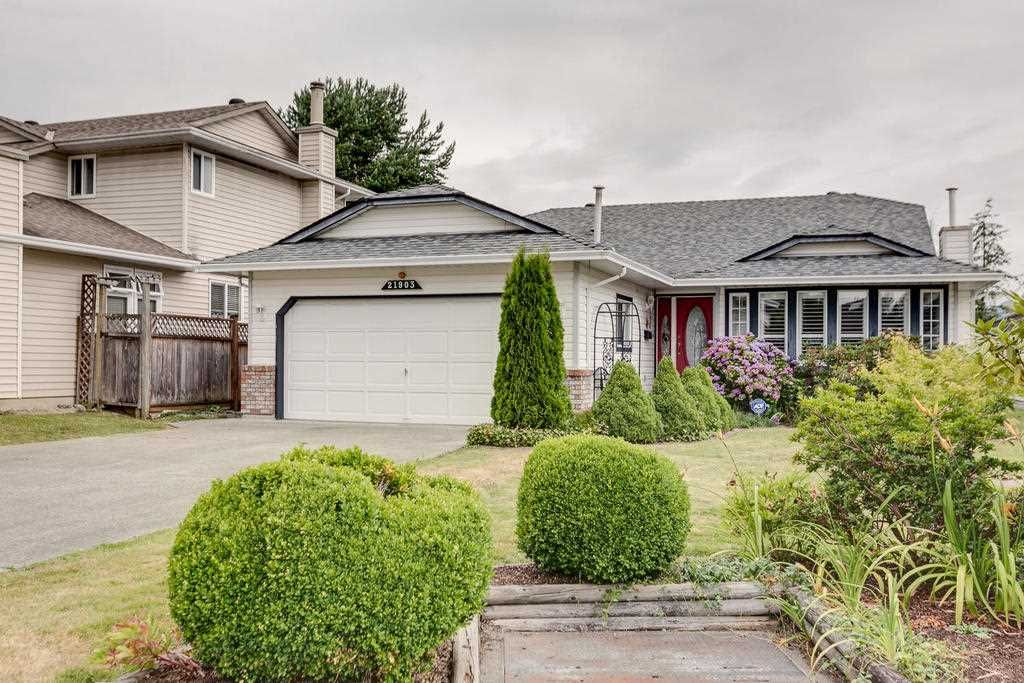 """Photo 1: Photos: 21903 126 Avenue in Maple Ridge: West Central House for sale in """"NORTH CENTRAL MAPLE RIDGE"""" : MLS®# R2188067"""