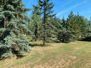 Photo 48: 55311 Rge. Rd. 270: Rural Sturgeon County House for sale : MLS®# E4258045