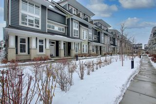 Photo 40: 191 Silverado Plains Park SW in Calgary: Silverado Row/Townhouse for sale : MLS®# A1086865
