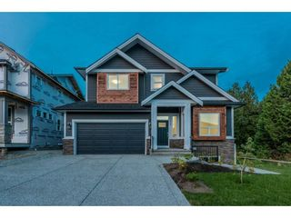 Photo 2: 11242 243 A Street in Maple Ridge: Cottonwood MR House for sale : MLS®# R2203994