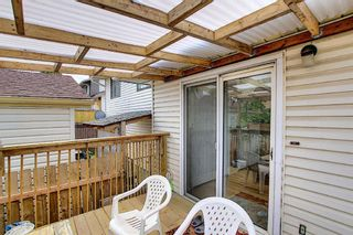Photo 27: 217 Templemont Drive NE in Calgary: Temple Semi Detached for sale : MLS®# A1120693