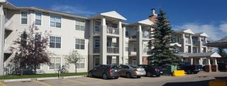 Photo 22: 321 4500 50 Avenue NW: Olds Apartment for sale : MLS®# A1016076
