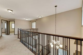 Photo 26: 245 Evanspark Circle NW in Calgary: Evanston Detached for sale : MLS®# A1138778