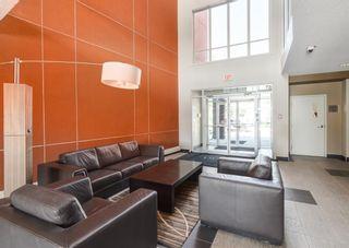 Photo 24: 239 2727 28 Avenue SE in Calgary: Dover Apartment for sale : MLS®# A1125792