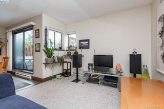 Photo 6: 206 1366 Hillside Ave in VICTORIA: Vi Oaklands Condo for sale (Victoria)  : MLS®# 751862