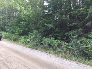Photo 3: Lot 9 Mountain Drive in Anglemont: North Shuswap Land Only for sale (Shuswap)  : MLS®# 10158352