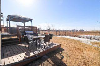 Photo 40: 168 Reg Wyatt Way in Winnipeg: Harbour View South Residential for sale (3J)  : MLS®# 202103161