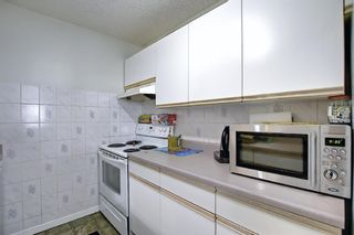 Photo 18: 110 11 Dover Point SE in Calgary: Dover Apartment for sale : MLS®# A1096781